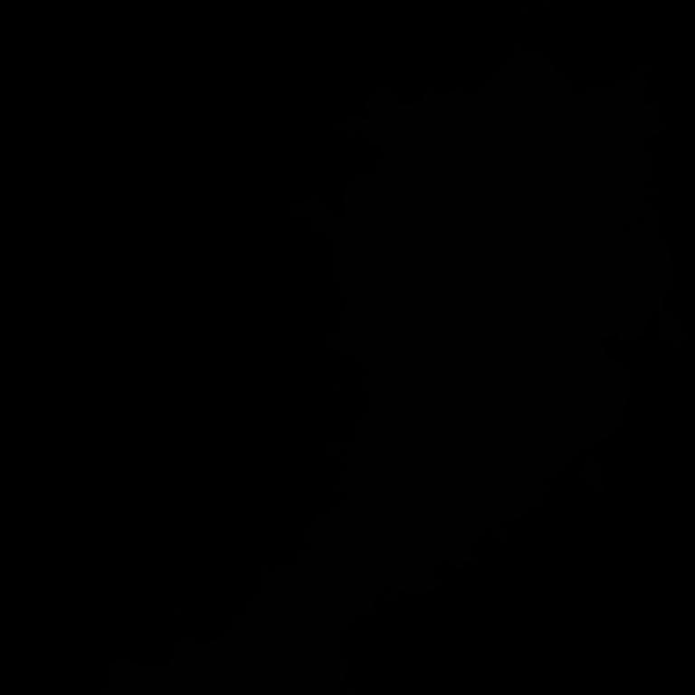 Panzoid Brawl Stars